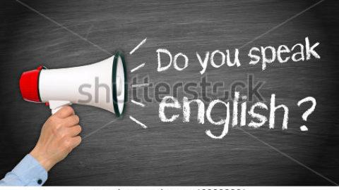 L'importanza della lingua.