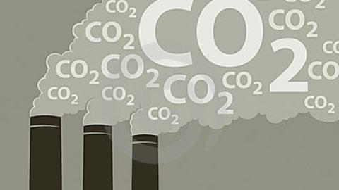 Per un mondo ecosostenibile