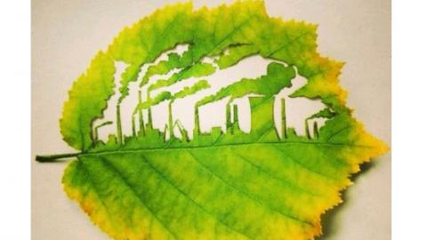 L'anidride carbonica è davvero inquinante?