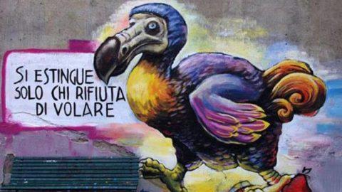 -GRAFFI + GRAFFITI