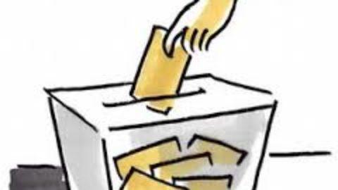 La vera democrazia è quella diretta