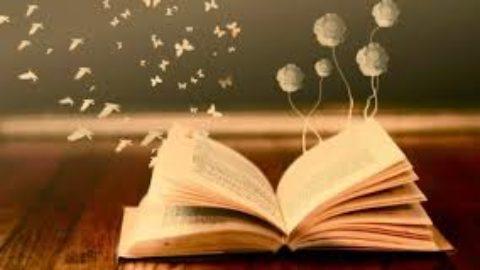 Leggere o non leggere? E' davvero importante la lettura?