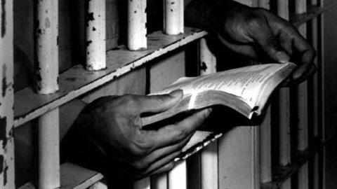 Libertà tra le pieghe di un libro