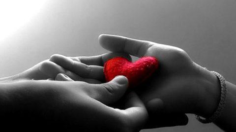 Il silenzio dell'onestà e della generosità