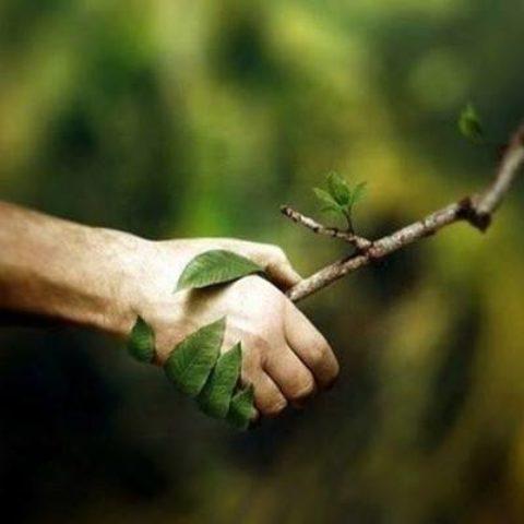 Il nostro  rapporto con la natura