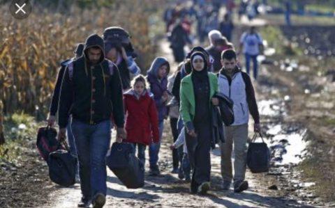Immigrazione: un fenomeno in crescita (di Giulia Bruno 4ASS)