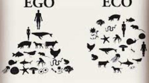 Uomo animale complesso e pericoloso